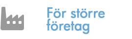 kameraovervakning_for_storre_foretag